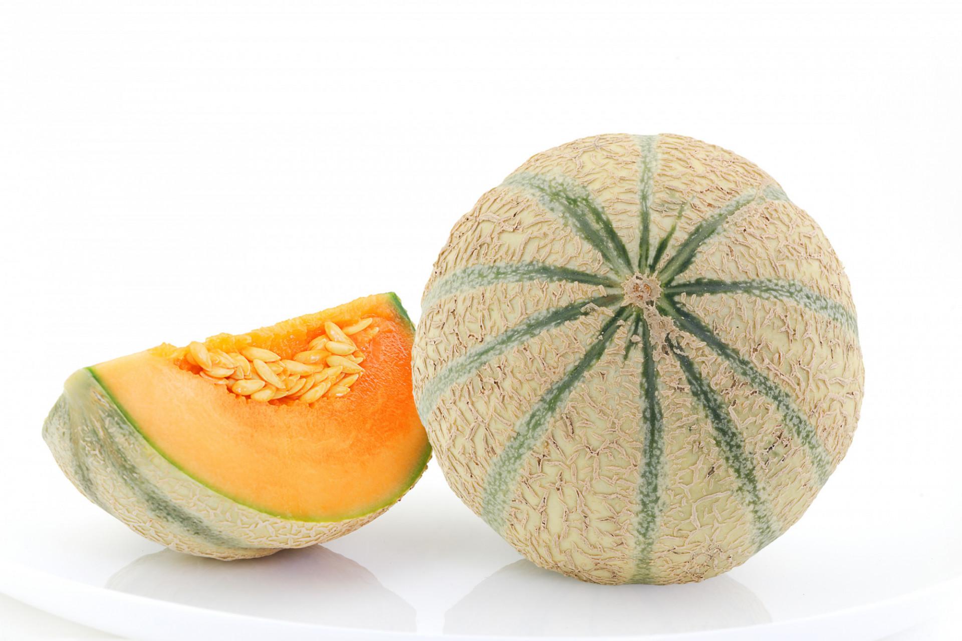 Melon PROMO