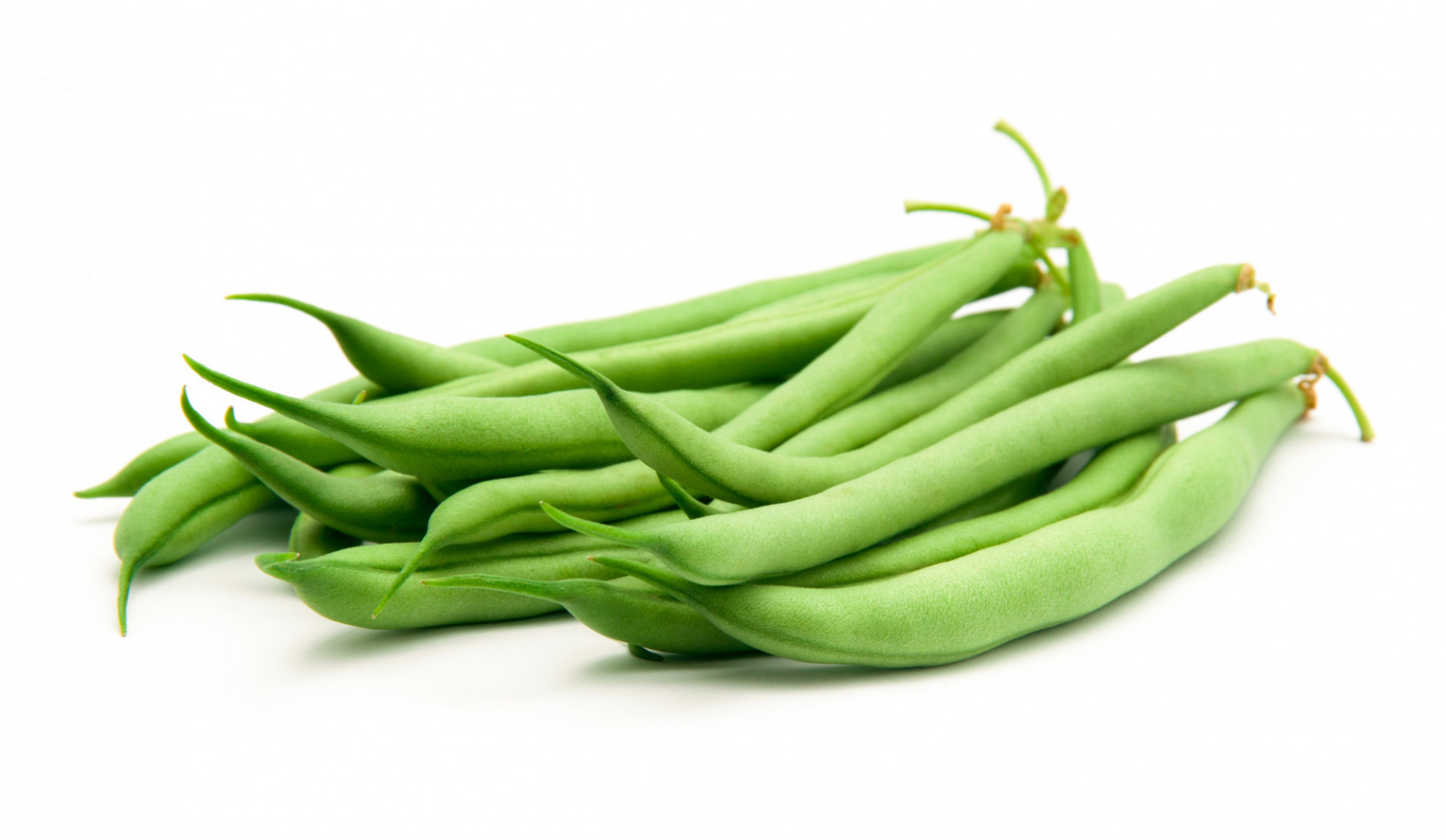 Haricot Vert fin récolté machine Français