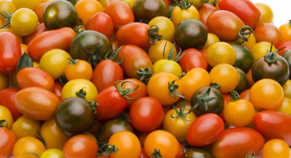Tomate cerise mixte